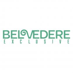 Belvedere Logo